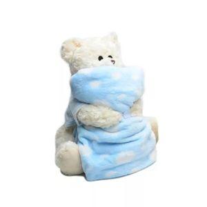 Kit-Urso-de-Pelucia-com-Manta-Flannel-Infantil---Andreza---Azul-2